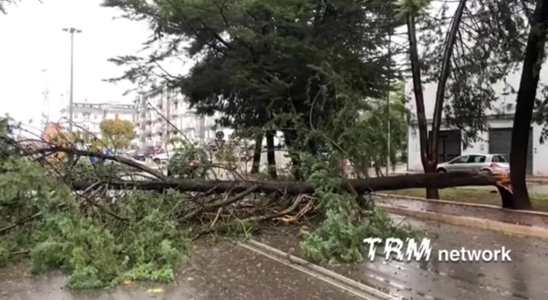 Matera, fonte TRM Network