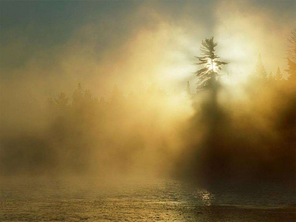 sole_nebbia.jpg