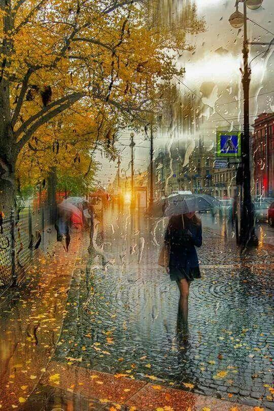 Осень дождь картинки красивые