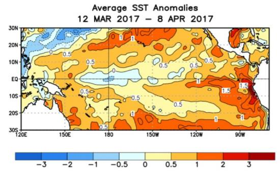 Fig.1 - Anomalie nella settimana passata circa la SST (Sea Surface Temperature) nel Pacifico Tropicale