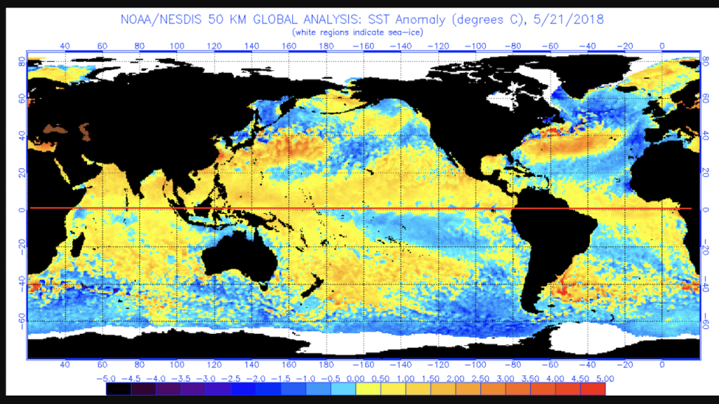 Anomalie di temperatura nelle acque superficiali degli oceani il 21 maggio 2018