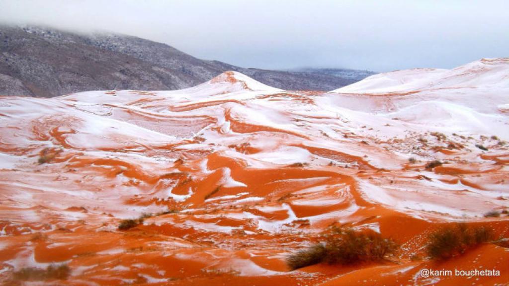 Neve nel Sahara: rarissima nevicata in Algeria settentrionale