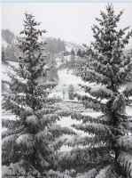 Neve a Cogne (1500m) al mattino del 30 dicembre