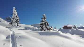 Neve sulle Alpi.